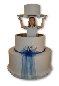 Large Pop-out Cake