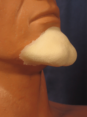 Large Witch Chin (Foam Latex)