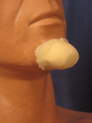 Small Witch Chin - Foam Latex